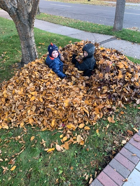 Two boys in a pile of leaves